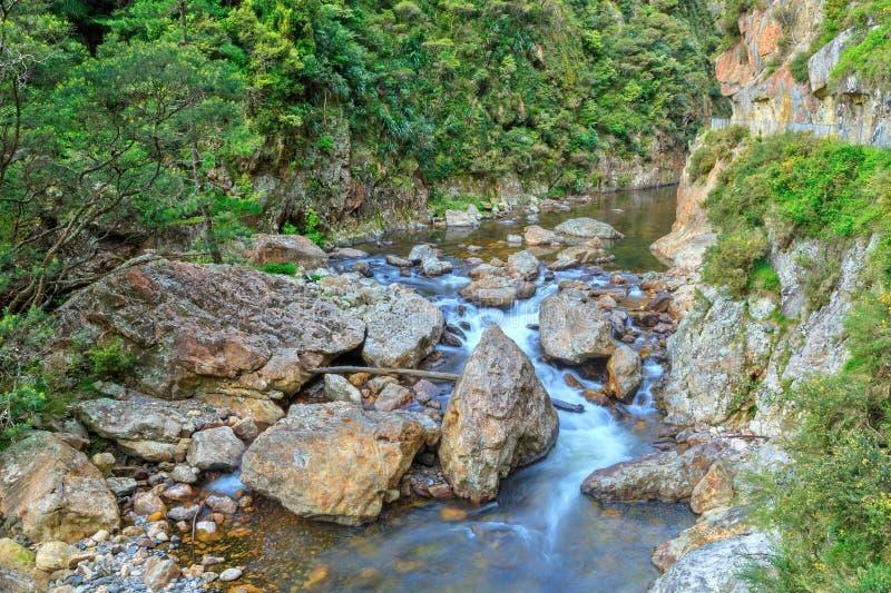 Rzeczny spływanie przez niewygładzonej doliny zdjęcia stock