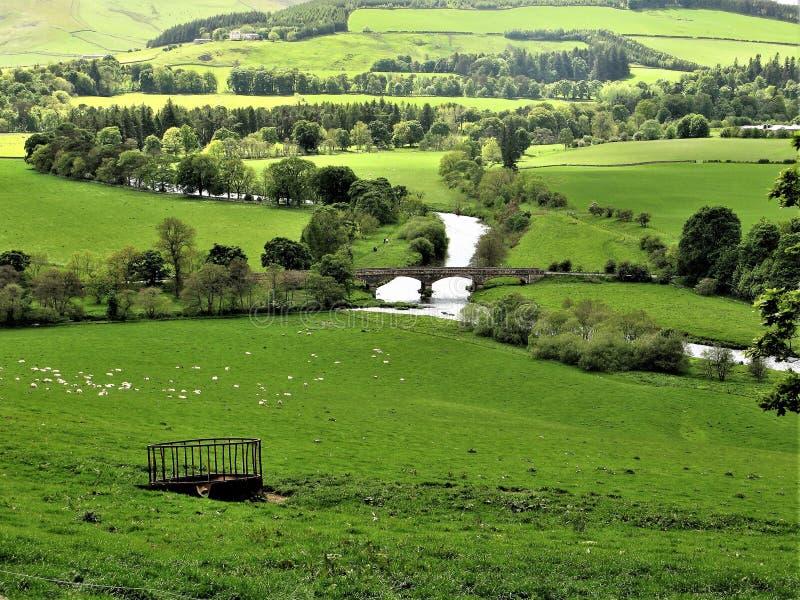 Rzeczny tweed blisko Peebles w Szkockich granicach, UK obrazy royalty free