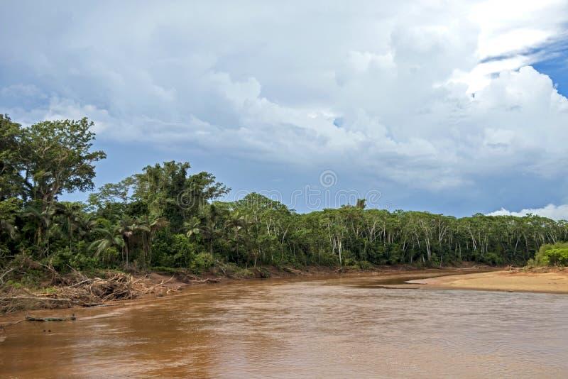 Rzeczny unosić się przez zielonego tropikalnego lasu deszczowego, Boliwia, Madidi park narodowy przy złotą godziną obrazy stock