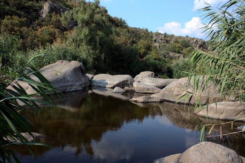 Rzeczny widok: kamienie, trzcina i krzaki, obrazy royalty free