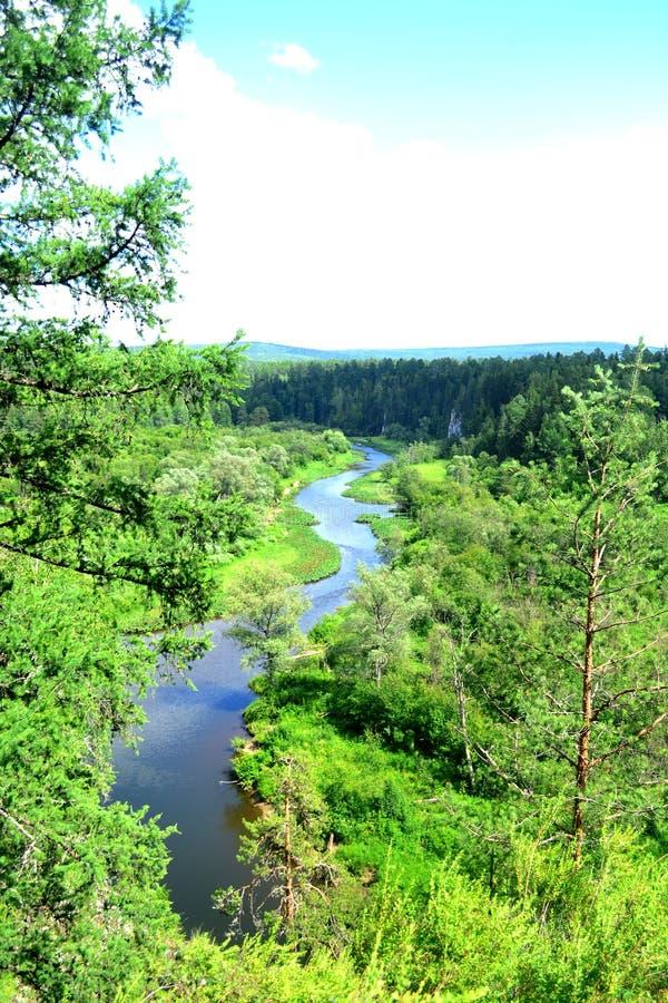 Rzeczny widok Natura park &-x22; Rogacze streams&-x22; Ural, Sverdlovsk region, Rosja obrazy stock