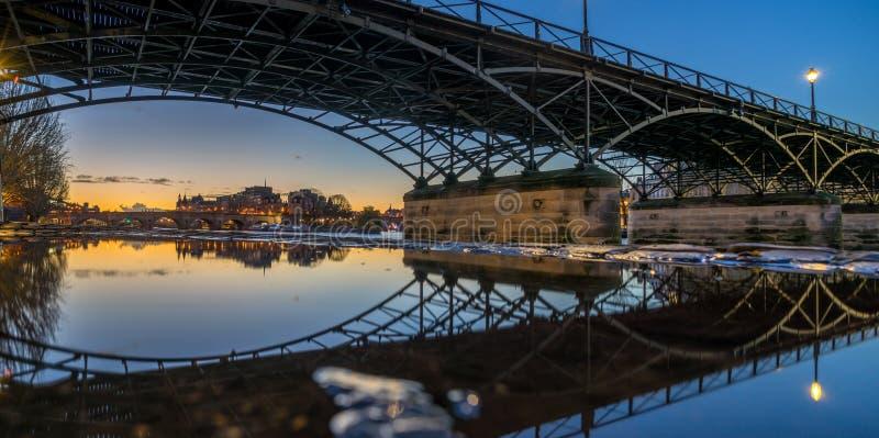 Rzeczny wonton z Pont des sztukami i Institut de Francja przy nocą ja obraz royalty free