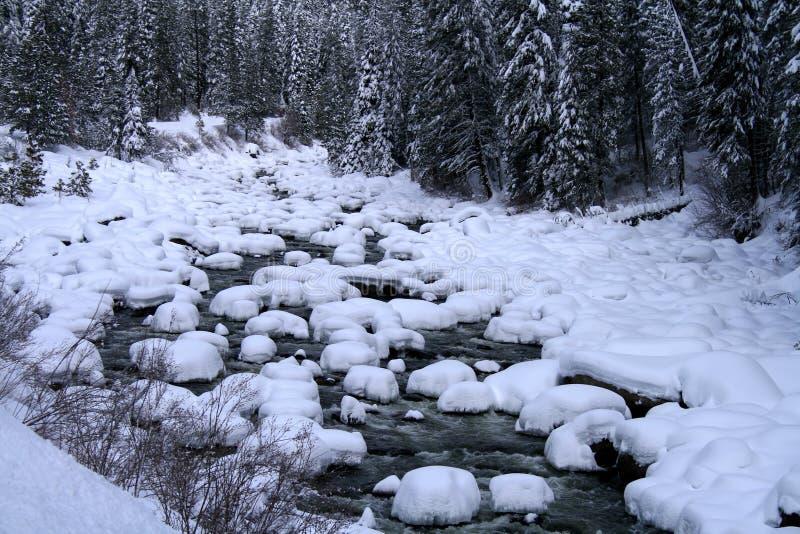 rzeka śniegu fotografia stock