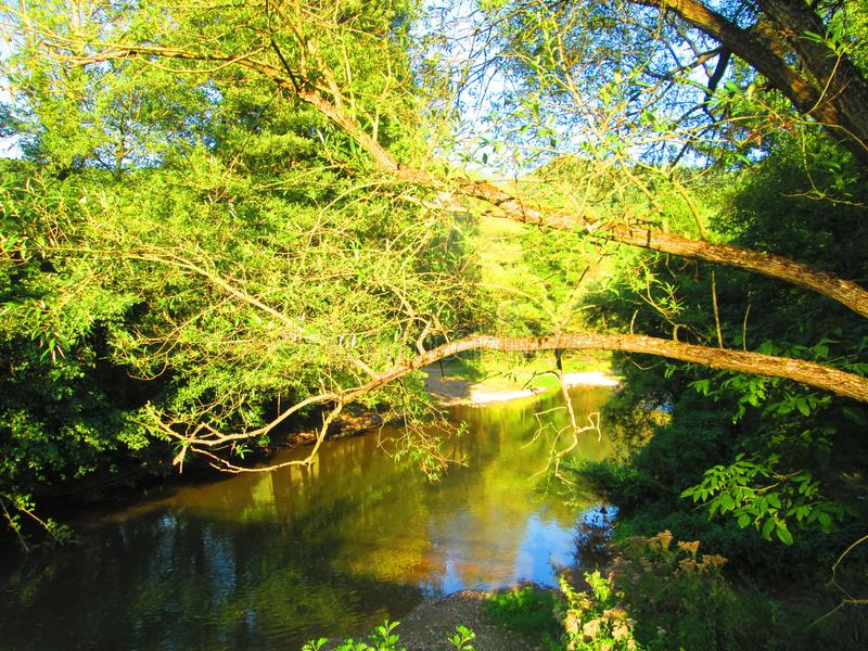 Rzeka zdjęcie royalty free