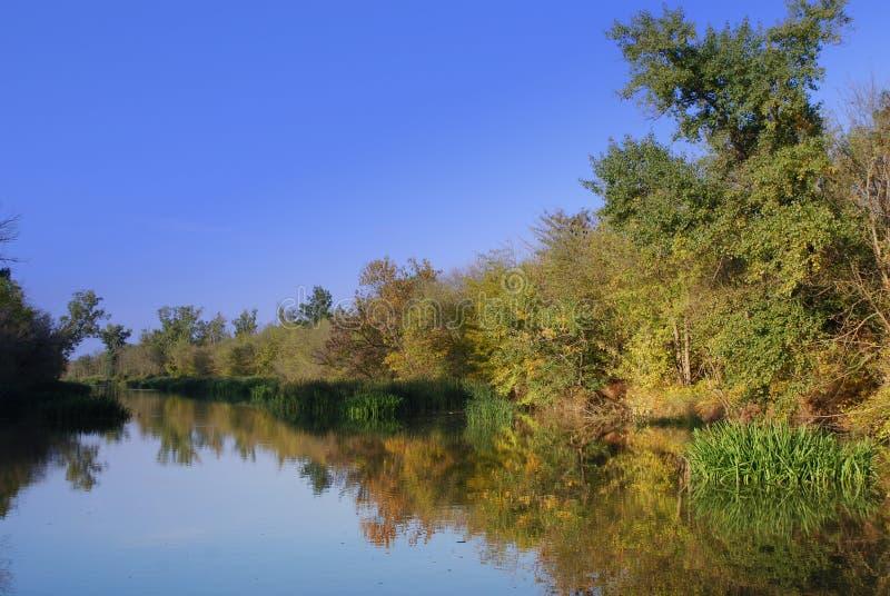 rzeka zdjęcie stock