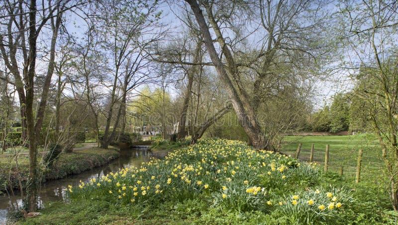 Download Rzeka. obraz stock. Obraz złożonej z krajobraz, przyrost - 4817543