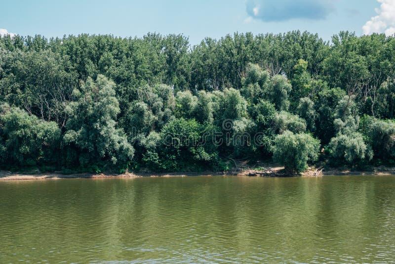 Rzeka Cisa i zielone drzewa w Szeged, Węgry obrazy royalty free