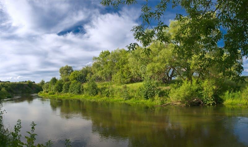 Rzeka i drzewa zdjęcie royalty free