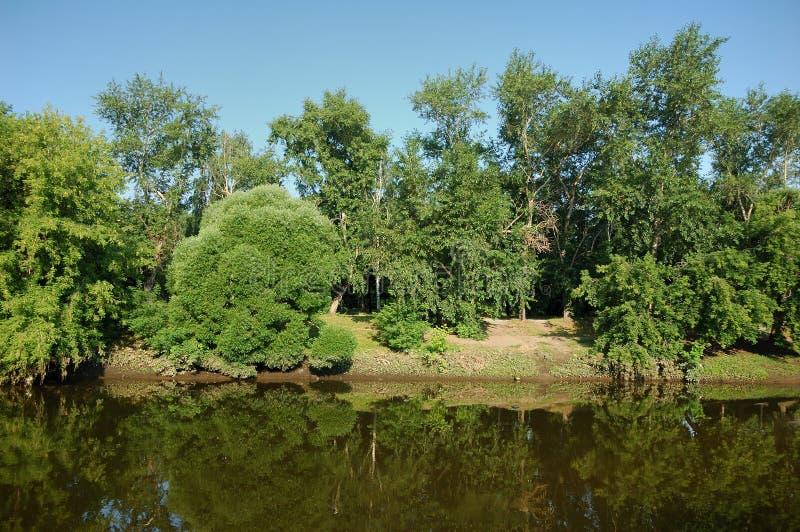 Rzeka i krajobraz w lato ranku zdjęcia royalty free