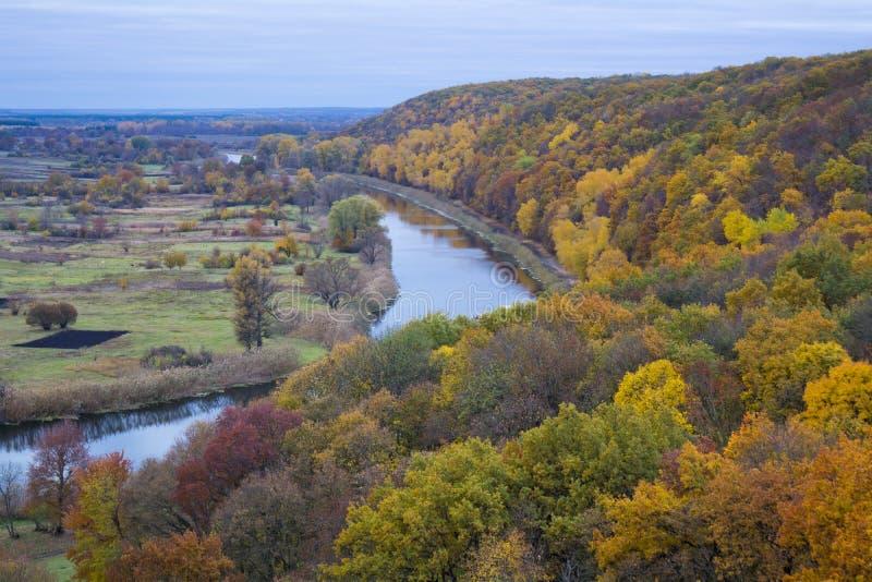 Rzeka i las w spadku zdjęcia stock