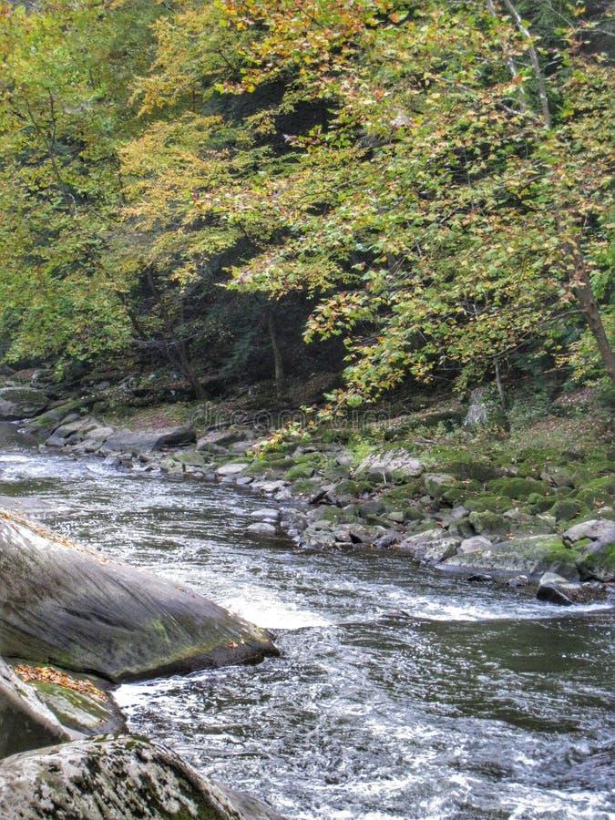 Rzeka i spadek zdjęcia stock