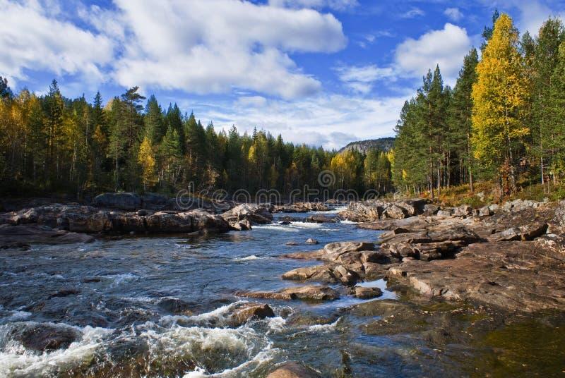 Rzeka krajobraz obraz royalty free