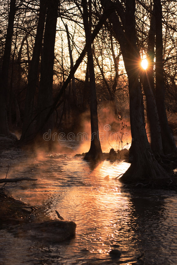 rzeka mgliście wschód słońca fotografia stock