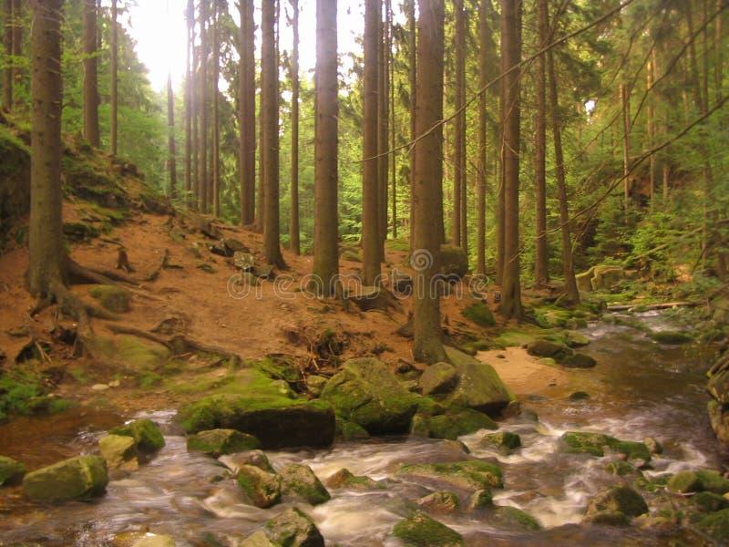 rzeka mountain fotografia stock