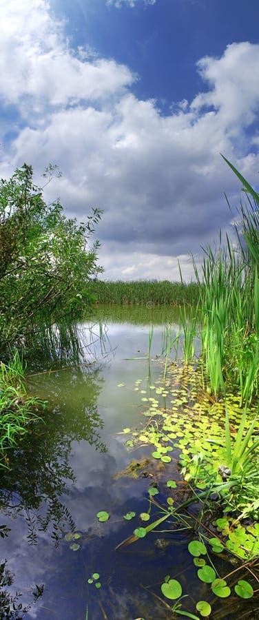 rzeka panoramy pionowe obrazy stock