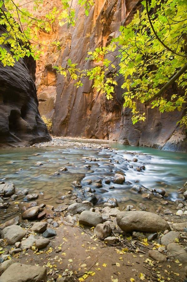 rzeka pochył. zdjęcie stock