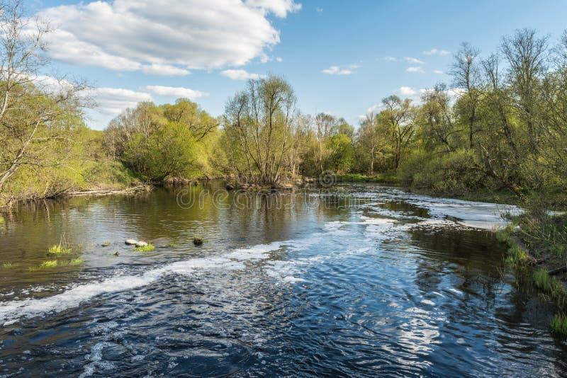 Rzeka powierzchnia woda stronniczo zakrywa z pianą i bąble, na linii brzegowej tam są drzewami i krzakami fotografia royalty free
