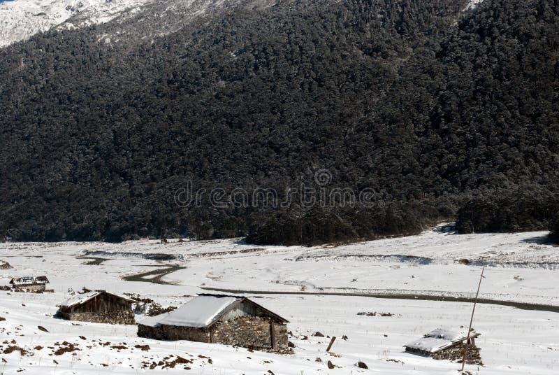 Rzeka przy Yumthang doliną fotografia stock