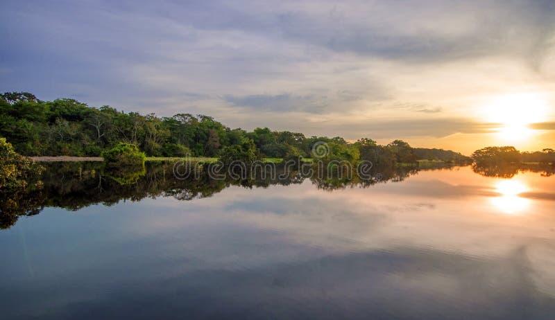 Rzeka w amazonka tropikalnym lesie deszczowym przy półmrokiem, Peru, Ameryka Południowa obraz stock