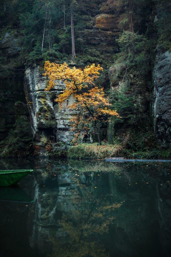 Rzeka w g?rach Woda i ska?y zdjęcie stock