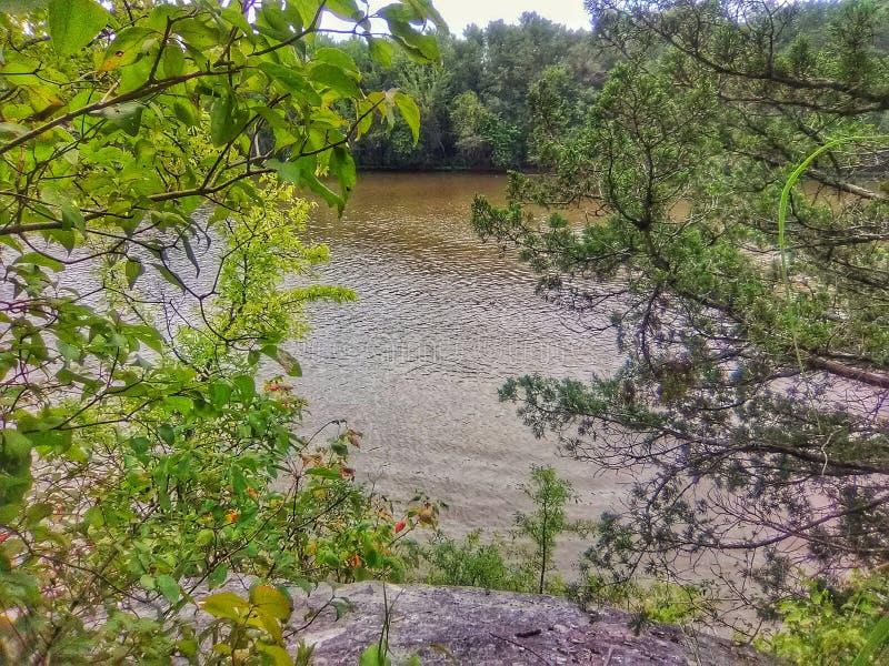 Rzeka w Oklahoma widzieć między drzewami stoi na falezie fotografia royalty free