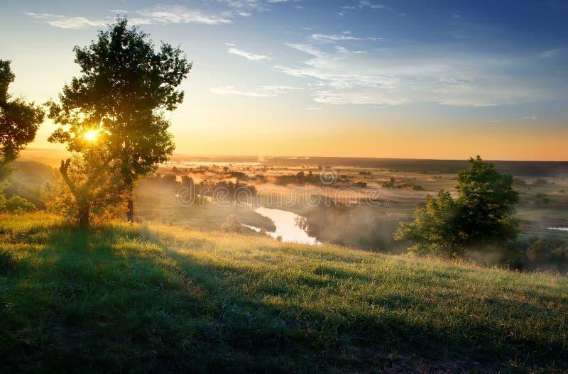 Rzeka w stepie fotografia royalty free