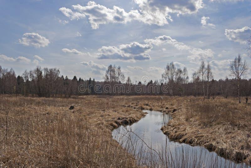 Rzeka w wsi obrazy royalty free
