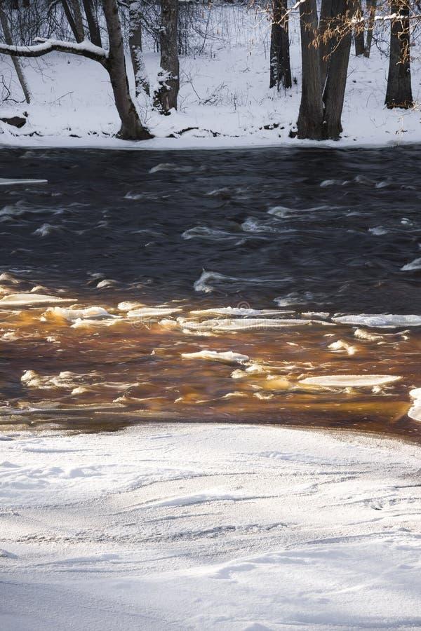 Rzeka w zima lesie fotografia royalty free