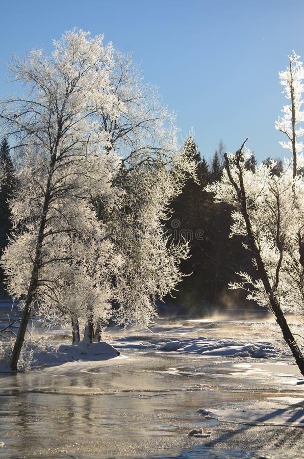 Download Rzeka w zimie zdjęcie stock. Obraz złożonej z tło, zakrywający - 28957970