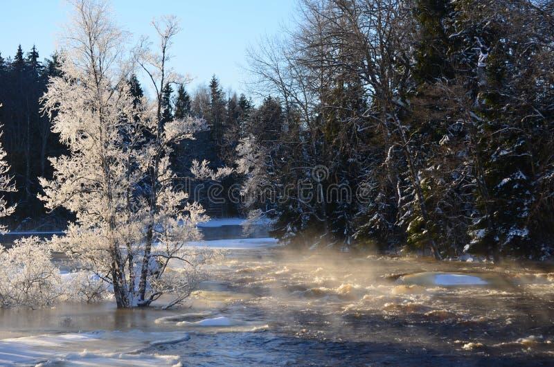 Download Rzeka w zimie obraz stock. Obraz złożonej z chłodno, sezon - 28960085