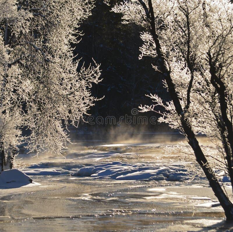 Download Rzeka w zimie zdjęcie stock. Obraz złożonej z jaskrawy - 28960090
