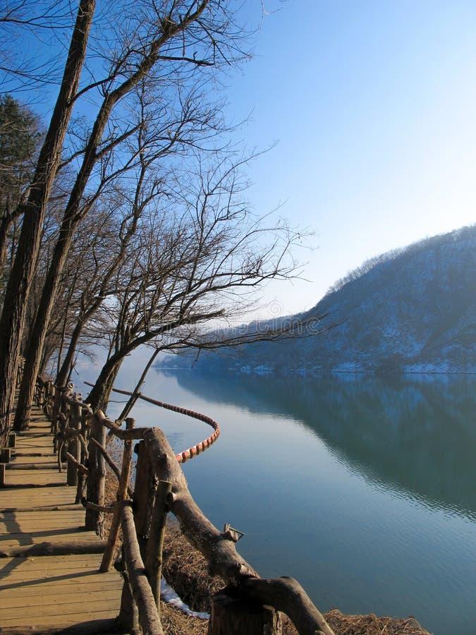 Rzeka w zimy scenie obraz stock