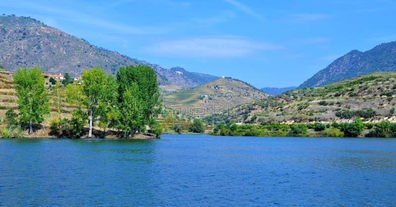 Rzeka winnicy tarasy i niebieskie niebo, - Douro rzeka zdjęcie stock