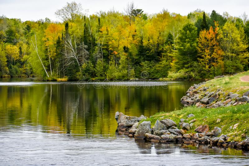 Rzeka Wisconsin z Spring Trees i Rocky zdjęcia stock