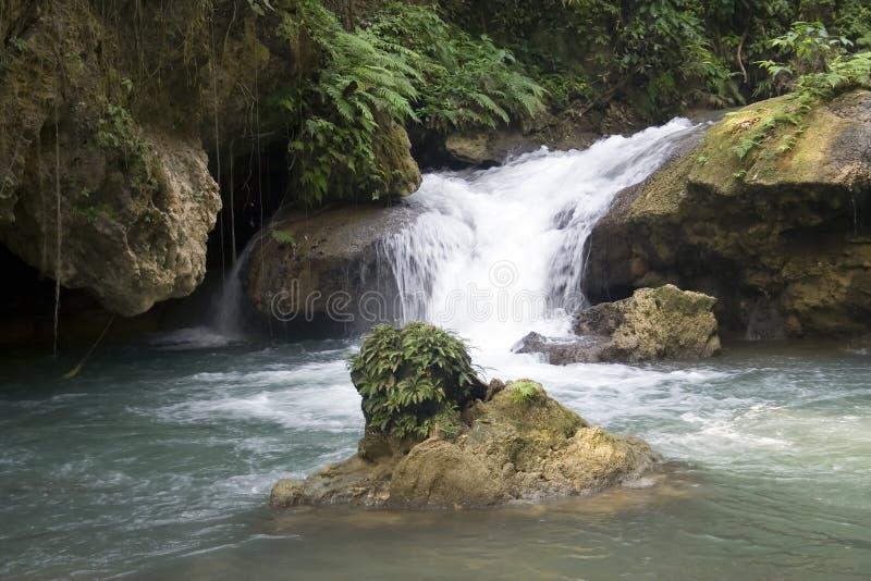 rzeka wodospadów y fotografia royalty free