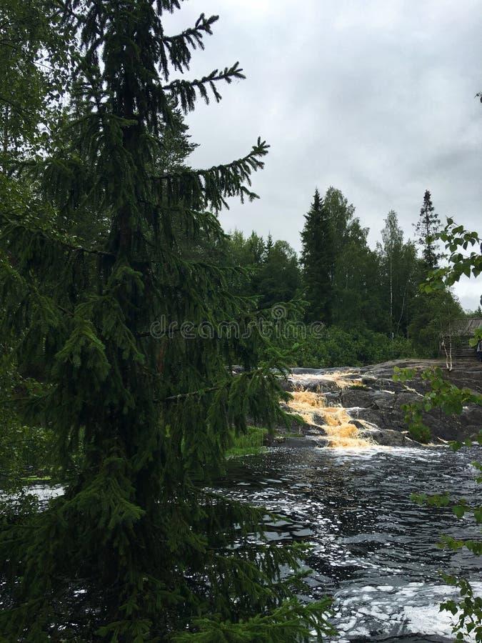 Rzeki i jeziora Karelia obrazy stock