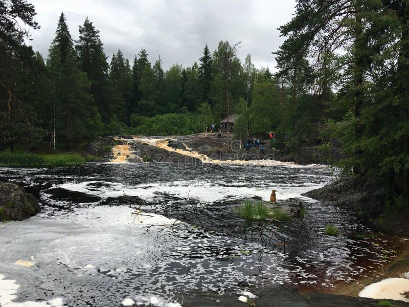 Rzeki i jeziora Karelia obraz royalty free