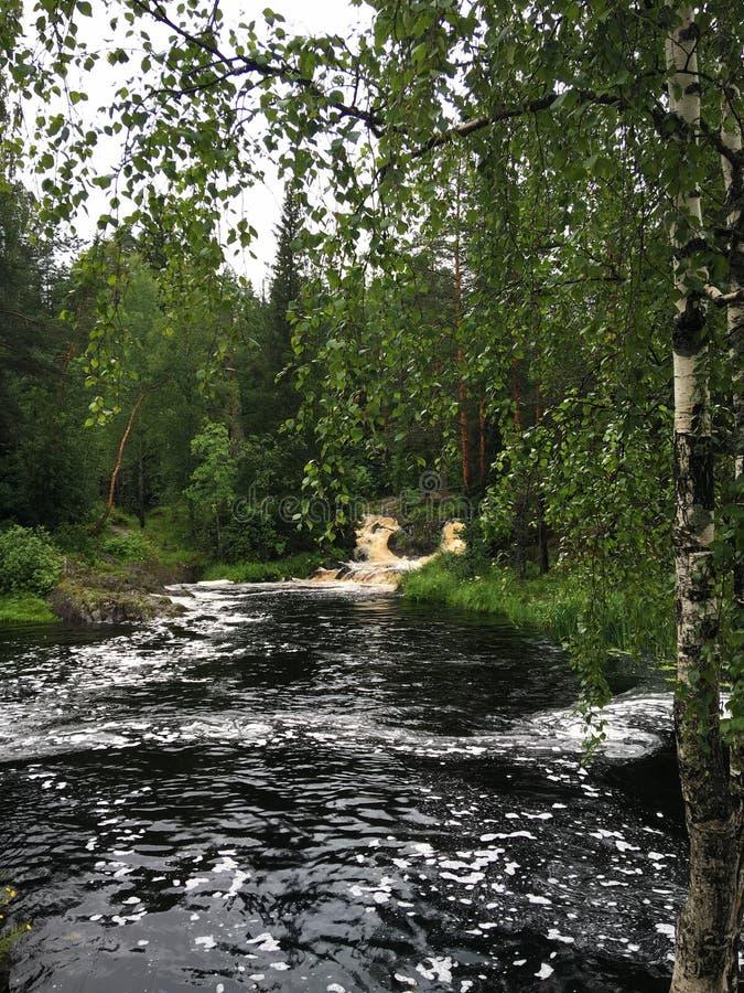 Rzeki i jeziora Karelia fotografia royalty free