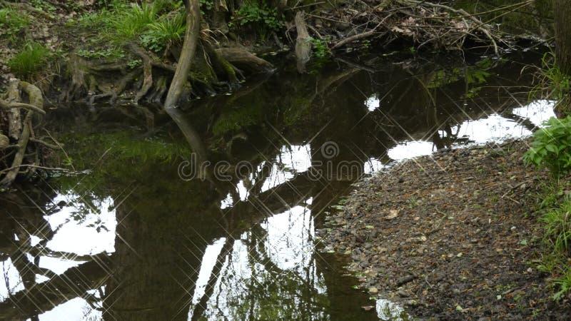Rzeki i strumień wod bieg Wciąż Zgłębiają 14 zdjęcia stock