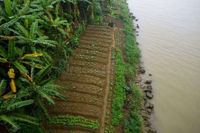 Rzeki wioski Asia prowincji brzegowy rolnictwo obraz royalty free