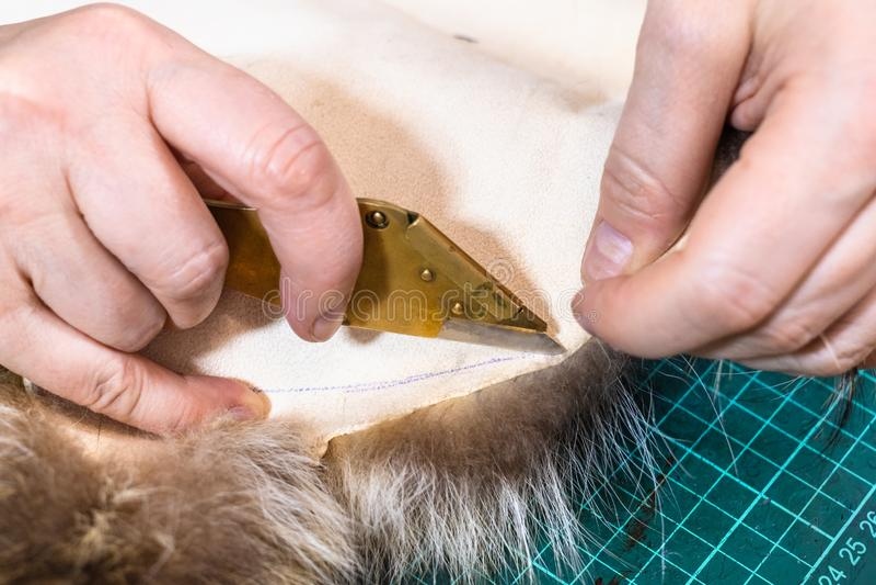 Rzemieślnik ciie futerko obrzuca mosiężnym nożem obrazy stock