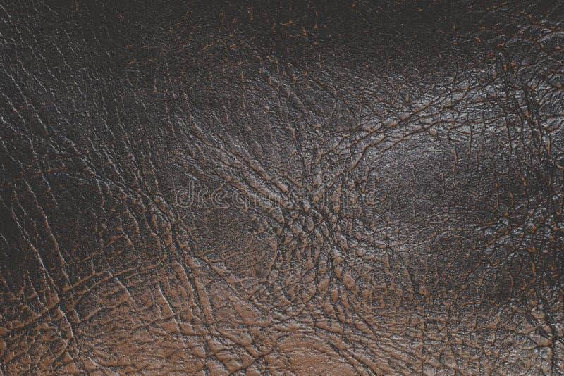 Rzemienna tekstura fotografia stock