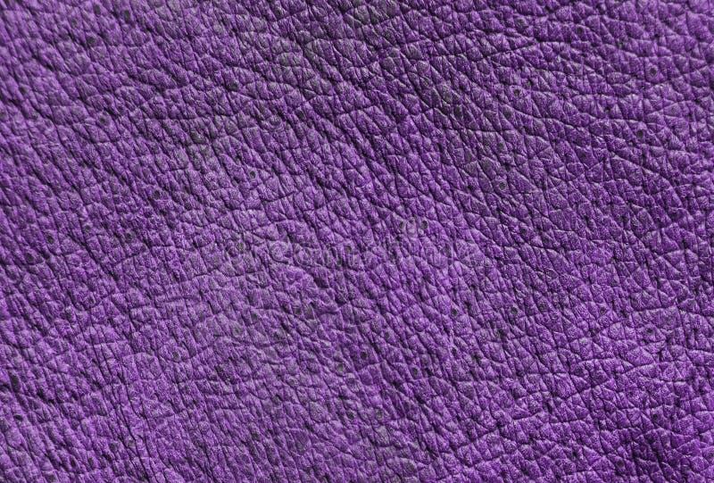 Rzemienna tekstura z pores zdjęcie stock