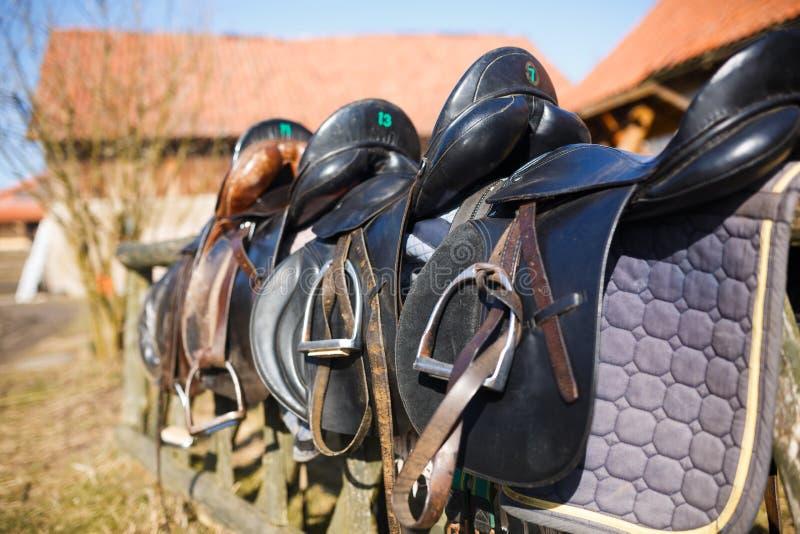 Rzemienny siodłowy koń obraz stock