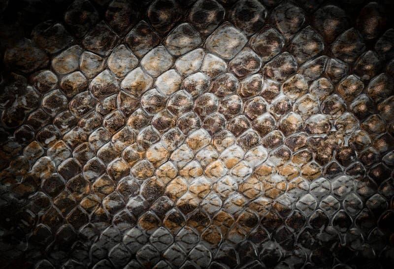 rzemienny tło wąż zamknięty rzemienny zdjęcia stock
