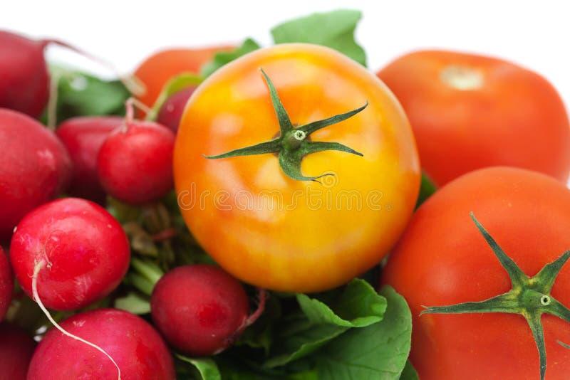 rzodkiew ogórkowy pomidor fotografia royalty free