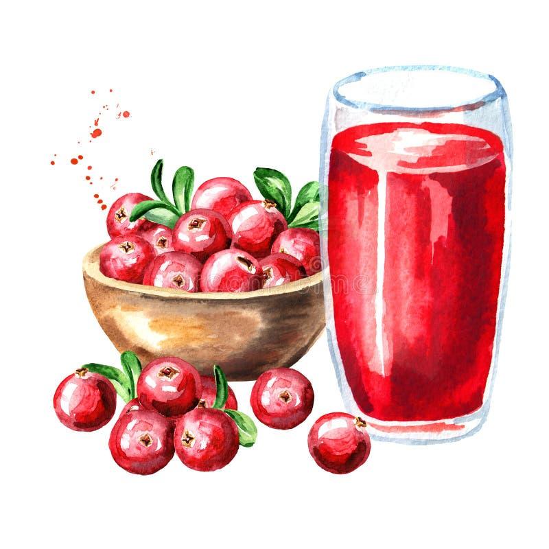 Rzuca kulą z dojrzałym czerwonym cranberry i szkłem cranberry sok Akwareli ręka rysująca ilustracja, odizolowywająca na białym tl ilustracja wektor