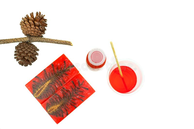 Rzucony sosna rożka hybryd i mieszać koloru epoxy żywicę w plastikowej filiżance zdjęcia royalty free
