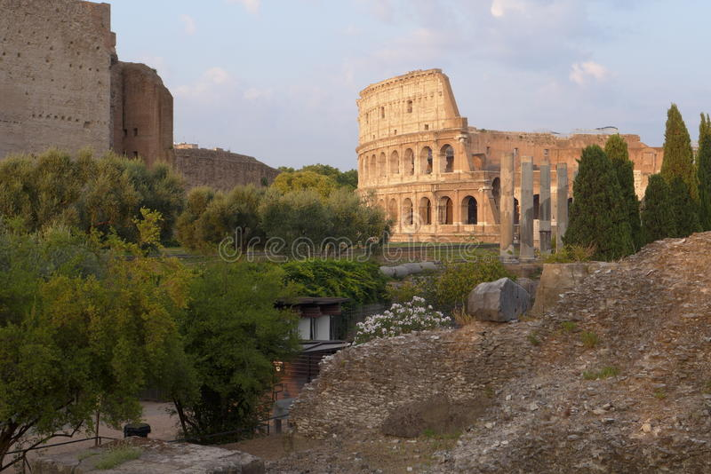 Rzym Colosseum w popołudniowym słońca świetle fotografia stock