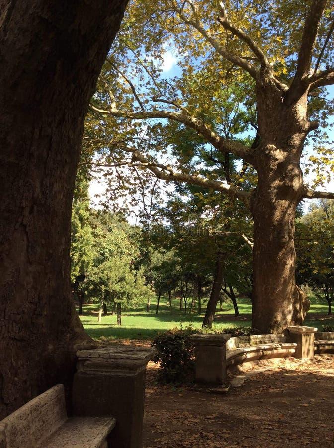 Rzym, park zdjęcie royalty free